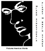 "FIGURE 27: ILLUSION: FIND THE WORD ""LIAR"" IN THE IMAGE."